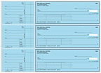 Blue Safety Accounts Payable Checks