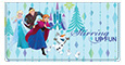 Frozen Northern Lights Checkbook Cover