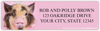 Oink - rachaelhale® Address Labels